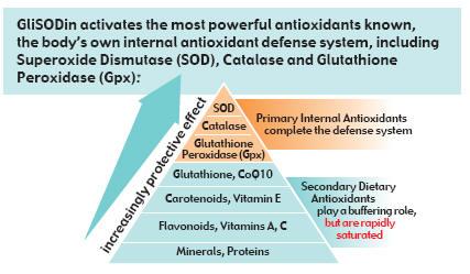 Glisodin And Immunity